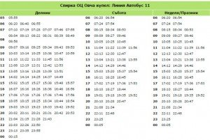 oc-ovcha-kypel--bus-11