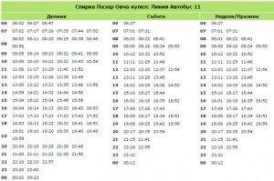 pazar-ovcha-kypel-bus-11