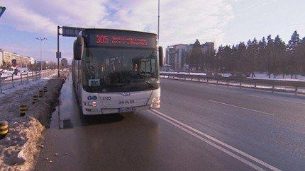 bus-305