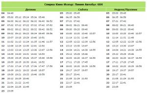 kino-iskur-bus-604