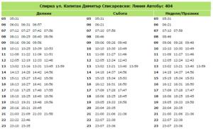 yl-kap-dimitur-spisarevski-bus-404