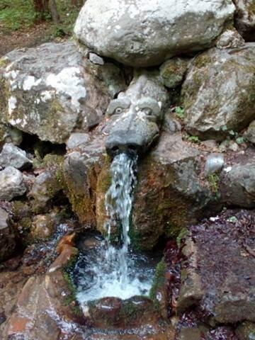 живата вода Боснек